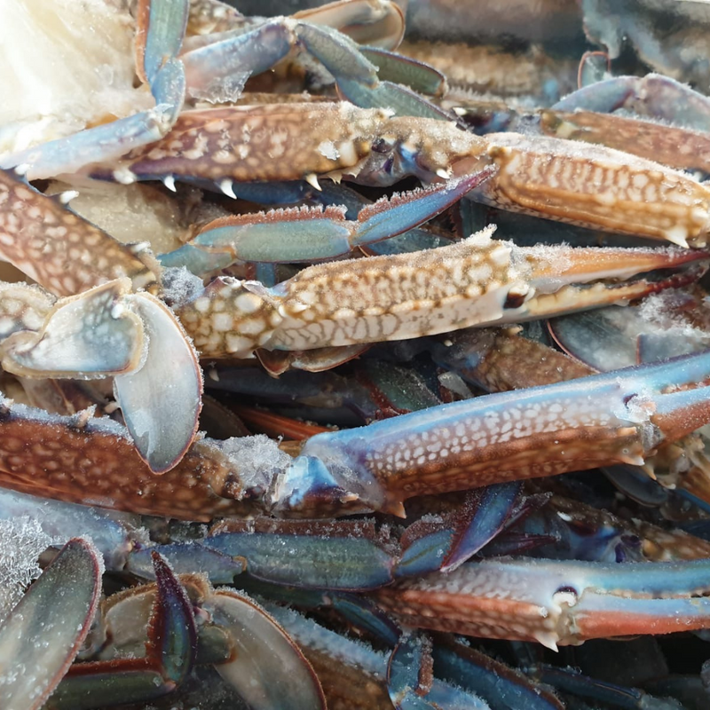 CRAB CLUSTERS