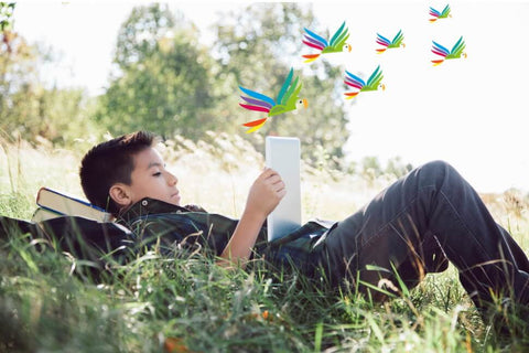 Young teen boy lying back on grass and reading a book, out of which the Parrot Street Book Club parrots are flying
