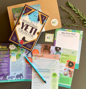 The International Yeti Collective by Paul Mason and accompanying activity pack.