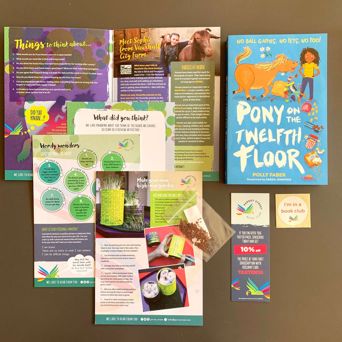 Pony on the Twelfth Floor by Polly Faber and accompanying activity pack.