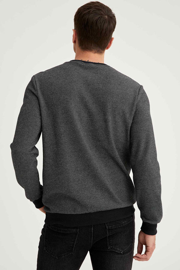 Herren Regular Fit Sweatshirt