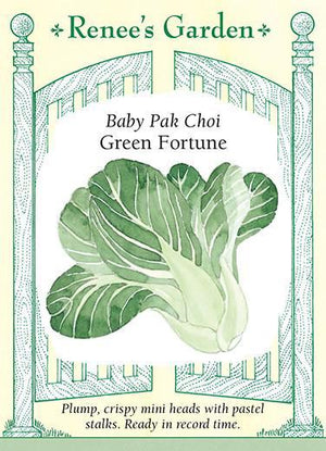 Load image into Gallery viewer, Baby Pak Choi