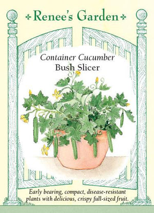Container Cucumber Bush Slicer
