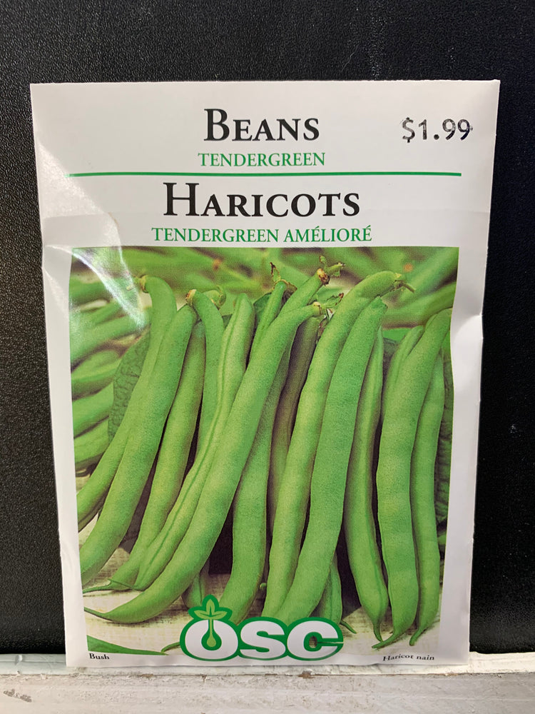 Tendergreen Bean Seeds
