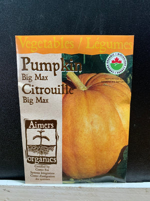 Load image into Gallery viewer, Organic Big Max Pumpkin Seeds