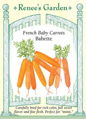 French Baby Carrots