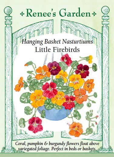 Load image into Gallery viewer, Hanging Basket Nasturtiums Little Firebirds