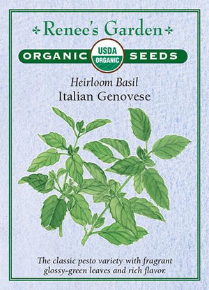 Load image into Gallery viewer, Organic Heirloom Basil - Italian Genovese