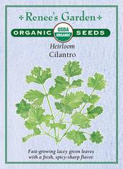 Organic Heirloom Cilantro