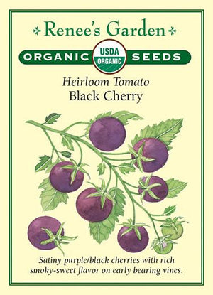 Organic Heirloom Tomato Black Cherry