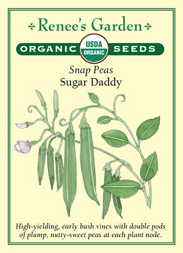 Organic Snap Peas- Sugar Daddy