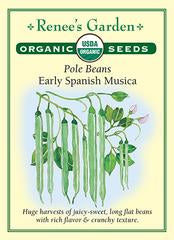 Load image into Gallery viewer, Organic Pole Beans - Early Spanish Musica