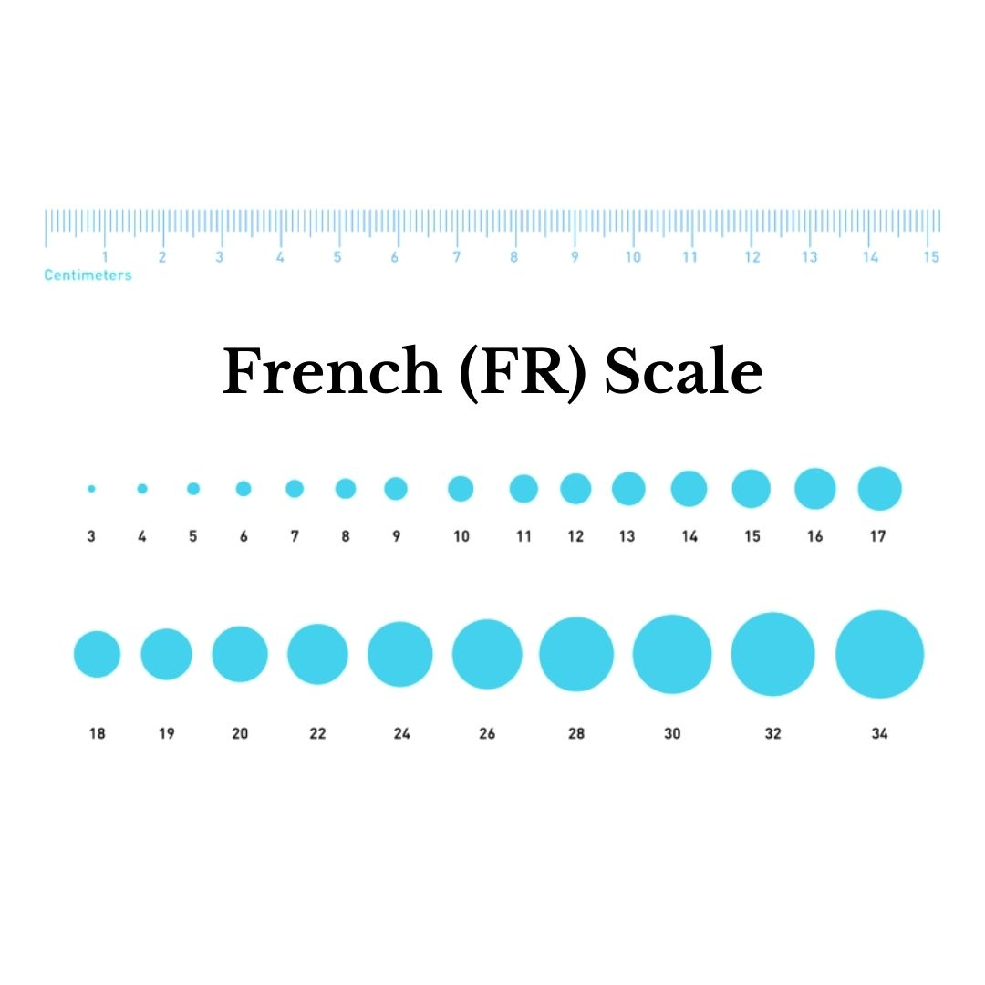 French FR Scale