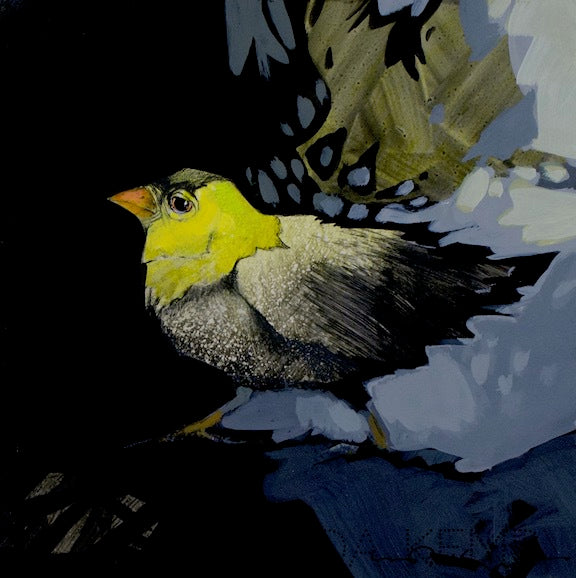 yellow headed goldfinch with a black cap walks from light to dark. original painting by Canadian Artist Linda Kemp