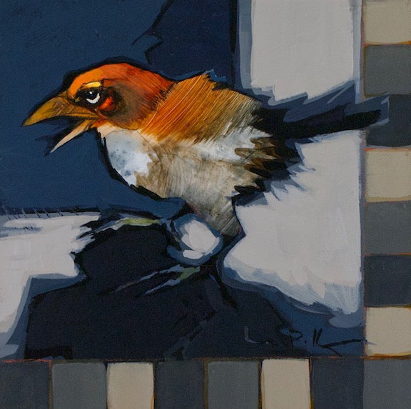 little orange sparrow bird and checkerboard border. original small acrylic painting by Canadian artist linda Kemp
