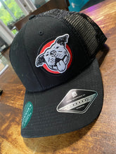 Load image into Gallery viewer, Swamp Haven Snapback