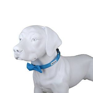 DEXDOG Bow Tie Dog Collar, Male Boy Puppy Accessory