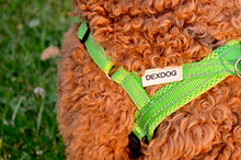Load image into Gallery viewer, DEXDOG EZHarness, Dog Harness | On/Off Quick | Easy Step in | Walk Vest
