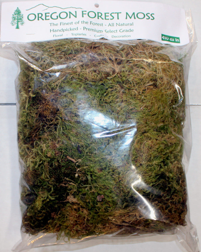 Moss - Forest Moss 410 cu. in. bag