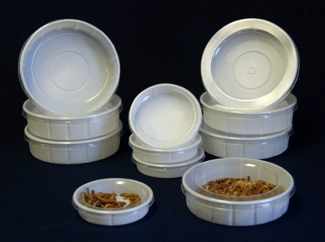 Mealworm Feeder/Water Dish - Small