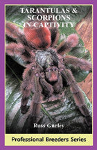 Tarantulas & Scorpions in Captivity - bean-farm