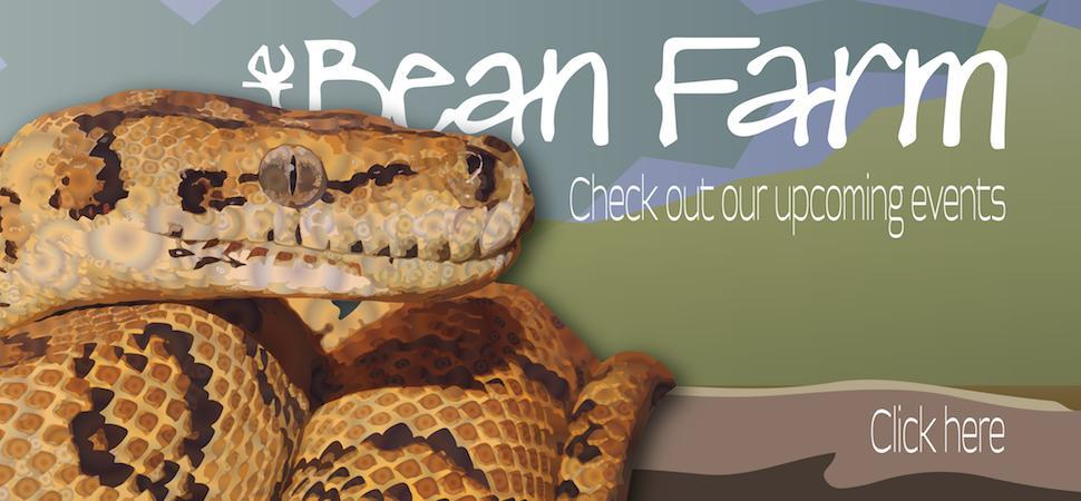 bean farm best herpetological supplies at the best price nationwide seattle area washington