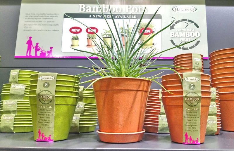 Haxnicks, sustainable, biodegradable, compostable bamboo pots and saucers win GLEE gardening award
