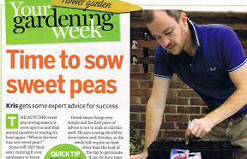 Haxnicks- Time to grow sweetness article - your gardening week- rootrainers in use