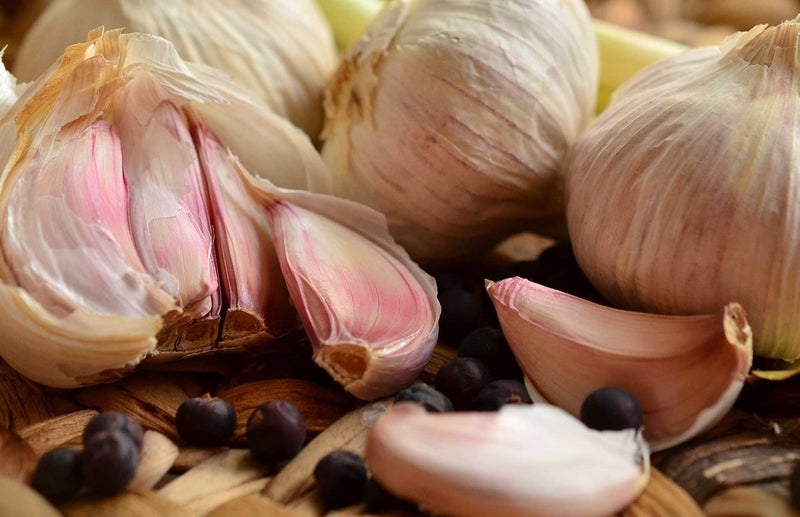 How to grow garlic - find the best way to grow garlic