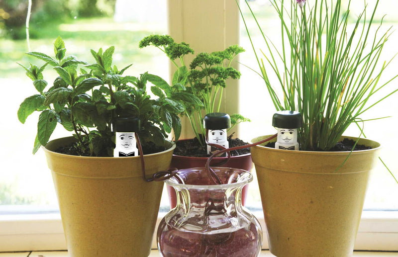 Water Waiters to water your plants when you can't plus other new products