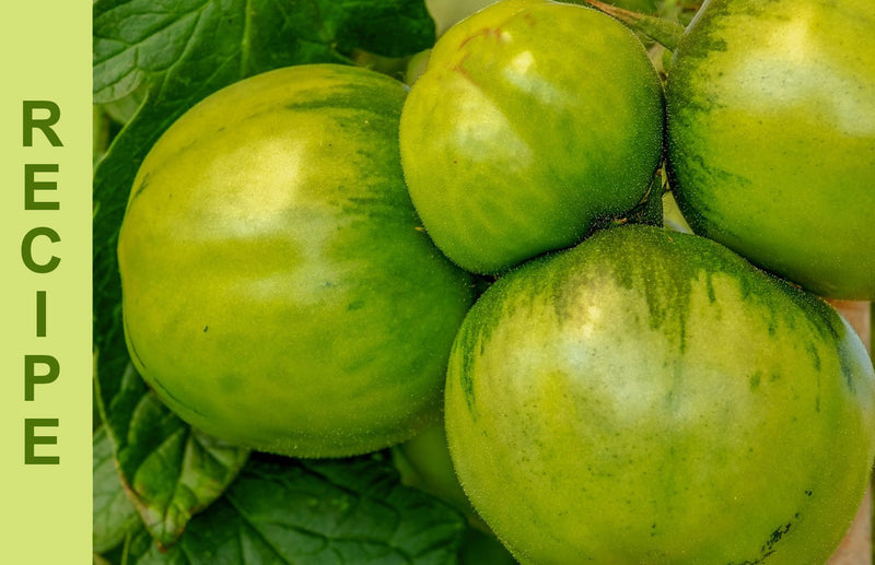 Haxnicks recipes for gardeners easy green tomato and apple chutney best way to use unripe green tomatoes