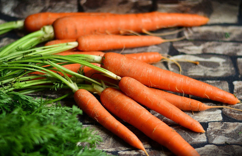 haxnicks- how to grow carrots guide- grow at home- carrot growing tips