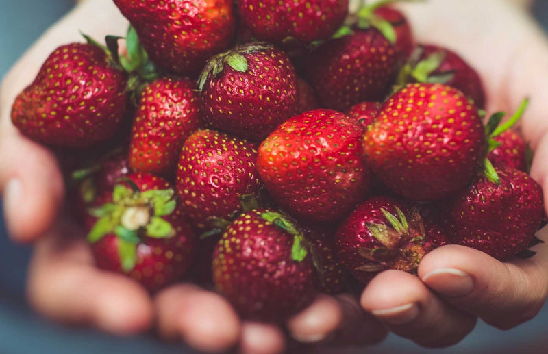 how to grow strawberries the best way