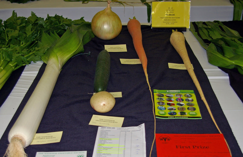 Winners of Haxnicks Schools Veg Growing Competition