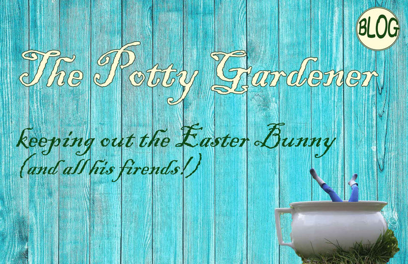 The Potty Gardener gardening blog how to keep rabbits out of your garden