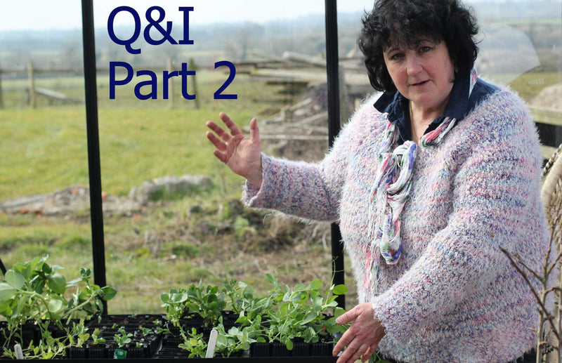 Pippa Greenwood - Q&A - Part II