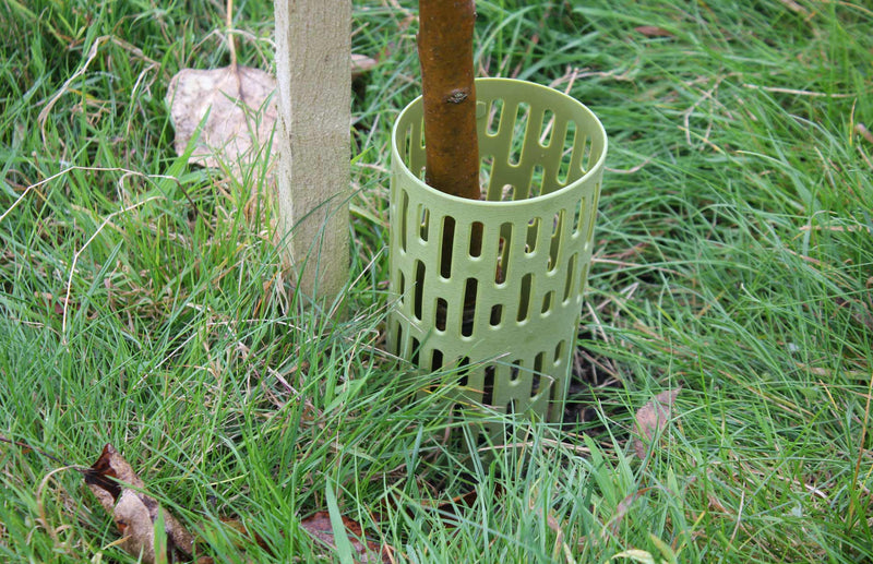Protect young tree trunks from damage - great for tree planting and growing trees