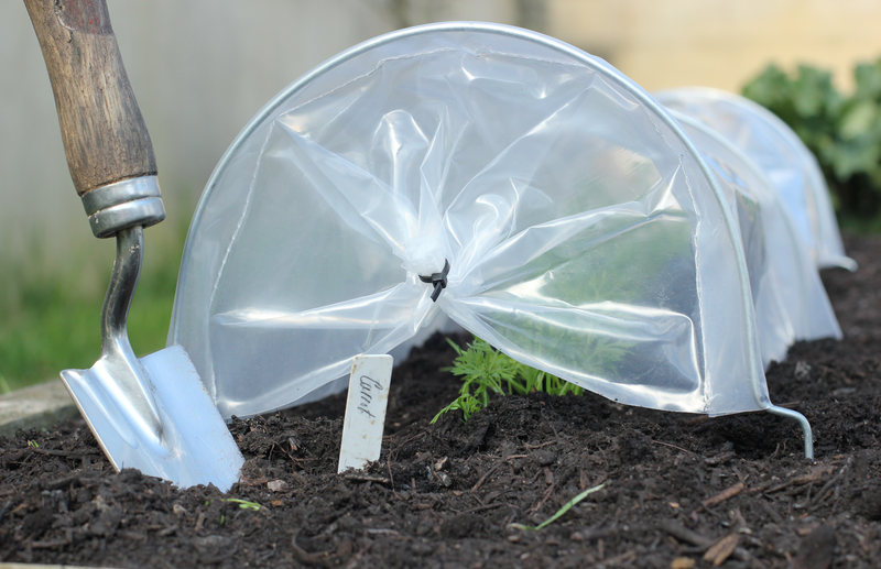 Haxnicks Easy seedling tunnel- how to grow seedlings- seedling protection- plant protection - propagation