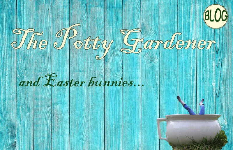 Potty gardener and how to protect plants from rabbits