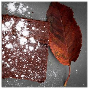 beetroot-brownie-with-autumn-leaf