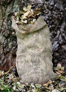December-tips-Composting-Sack-with-leaves
