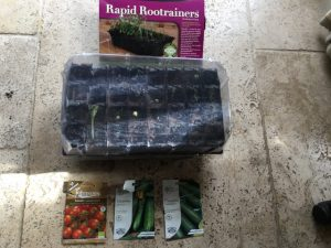 Haxnicks Rapid Rootrainers with seed sprouting and lid on plus seed packets