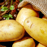 potatoes_in_sack_gardening_advice_how_to_choose_seed_potatoes