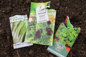 Seed_Packets_for_Spring_garden_jobs