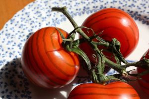 4 striped tomatos on a plate