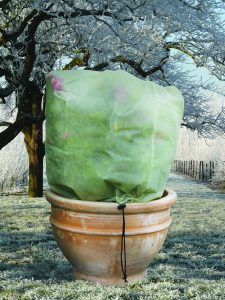 Fleece_on_potted_plant_outside