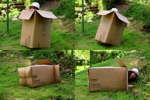 Move_house_4_stages_of_woman_hiding_in_cardboard_box_box_falling over