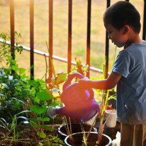 growing_in_winter_boy_with_watering_can_watering_plants