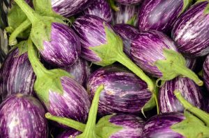 aubergine_with_green_stalks