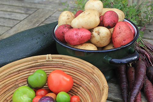 Healthy Potatoes and other Vegetables grown with Haxnicks Products